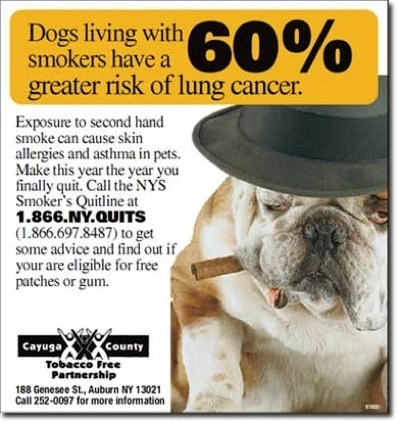 Winston cigarette coupons mail